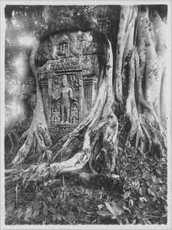 exposition, archéologues à Angkor, Angkor, Conservation, archéologie, Cernuschi, architecture, restauration, Angkor Wat, Tah Prom, Banteay Srei, Bayon, Baphuon, Preah Ko