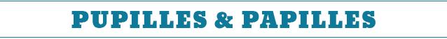 bento, boite, repas, nourriture, carnet, japonais, japon, société, civilisation, gamelle, riz, prune, boîte à bento, bento&co, famille, souvenir, lheure du bento, abe satoru, naomi satoru, déjeuner