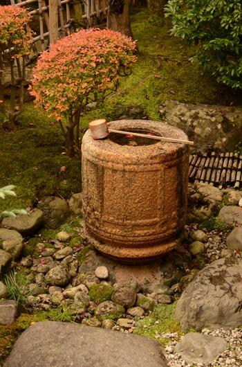 cérémonie, thé, japon, thé vert, vert, senchin, taiho, an, uji, dégustation, visite, rivière