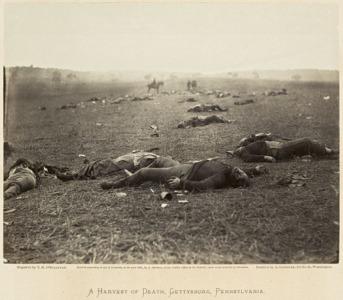 Grandeur nature exposition de paysages américains et canadiens de 1860 à 1918 au musée des beaux arts à Montréal