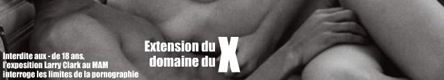 Extension du domaine du X : enquête sur la pornographie, au croisement entre le juridique et la morale.