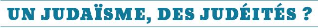 rencontres, livres, mondes, juifs, hôtel, lutetia, judaisme, judéité, judeite, yehoshua, rétrospective, colloque, concert, édition, 2014, 2013, analyse, compte, rendu, résumé, photo, photos