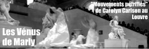 Création : Mouvements pétrifiés de Carolyn Carlon au musée du louvre, pour la nocturne du 26 mars 2010