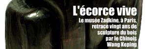 Exposition : Wang Keping, la chair des forêts, au musée Zadkine à Paris jusqu`au 12 septembre 2010