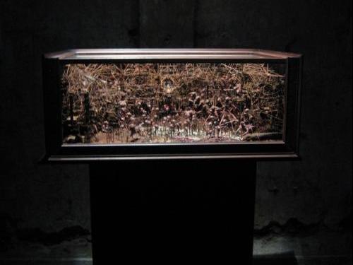 Exposition Nouveaux monstres Lille 3000 gare saint sauveur