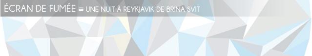 Dossier Fuites au Nord : Une nuit à Reykjavik de Brina Svit, publié chez Gallimard.