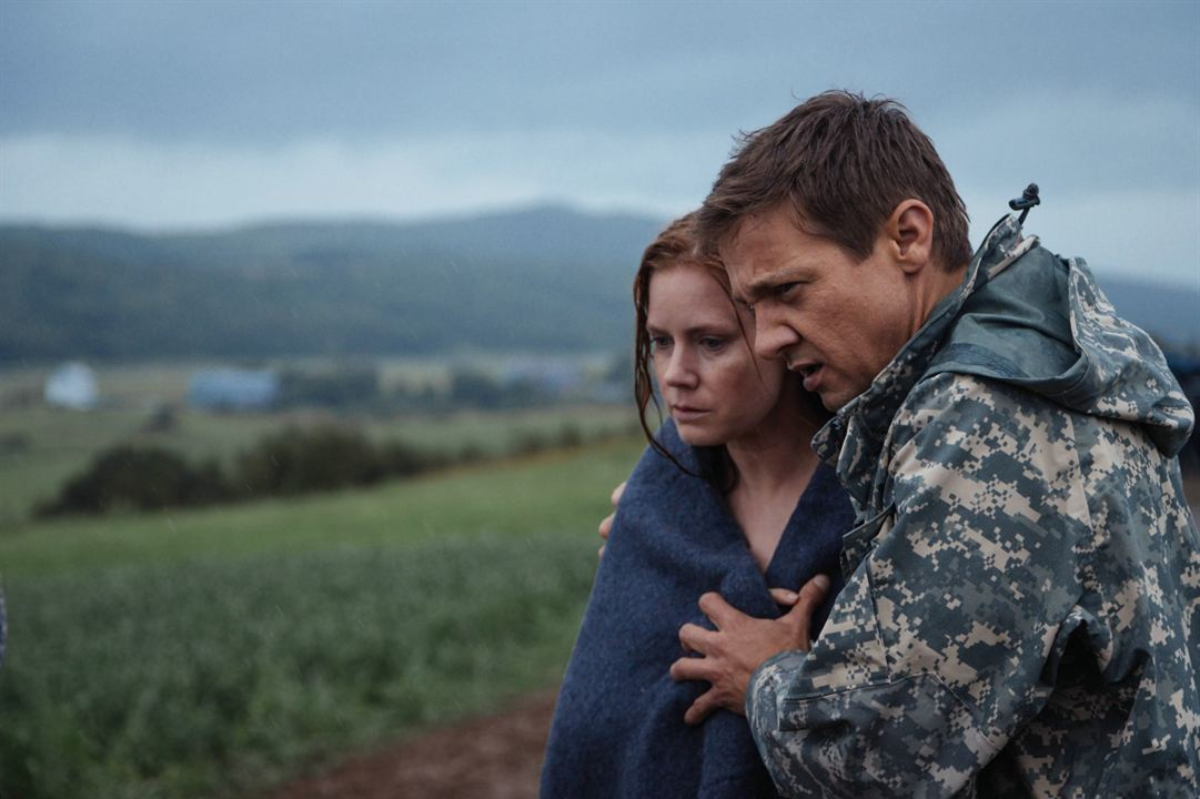 denis villeneuve, arrival, premier contact, science-fiction, sciences humaines, personnage feminin, ted chiang, jeremy renner, amy adams, extra-terrestres, écologie, sapir-whorf, méta-fiction