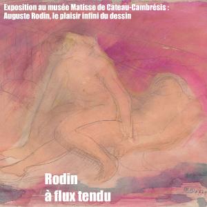 Exposition : Auguste Rodin, le plaisir infini du dessin au musée Matisse au Cateau-Cambrésis, jusqu`au 13 juin 2011.