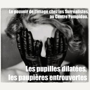 Le Centre Pompidou accueille l`exposition `La subversion des images` qui revient sur l`importance du visuel dans le mouvement surréaliste.