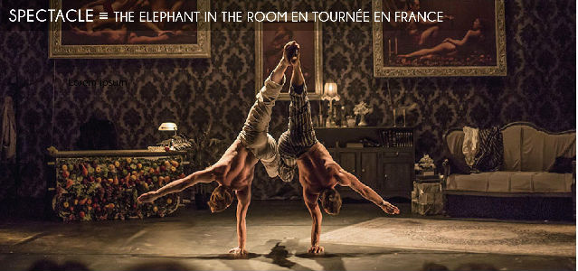 the elephant in the room, theatre bernadette lafont nimes, cirque le roux, music hall, danse, cirque, acrobaties, comique, comédie, claquettes, musique, vaudeville, costumes