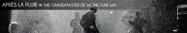 Cinéma : The Grandmaster de Wong Kar Wai
